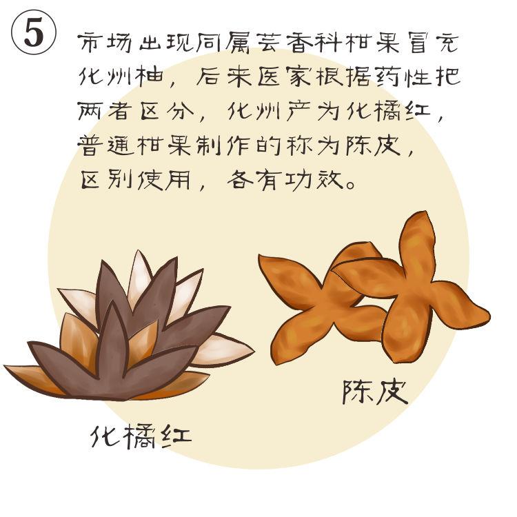 礞壤化橘红